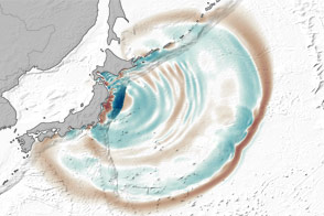 The Seafloor Focuses and Merges Tsunami Waves - selected image