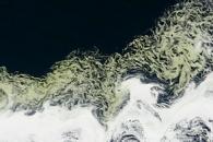 Greening the Princess Astrid Coast