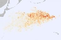 Tracking Debris from the Tohoku Tsunami