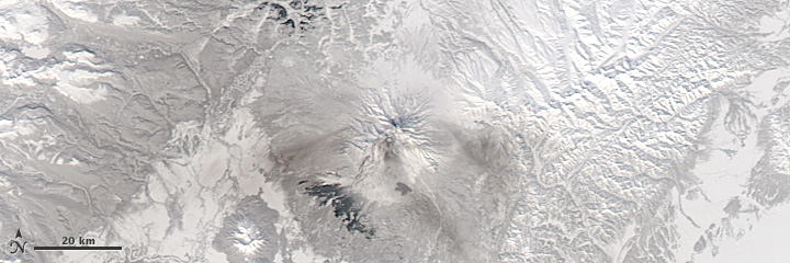 Continuing Eruption of Shiveluch
