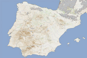 Drought Hits Spain's Wheat Crop