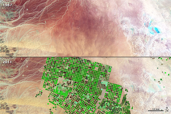 Crop Circles in the Desert - related image preview