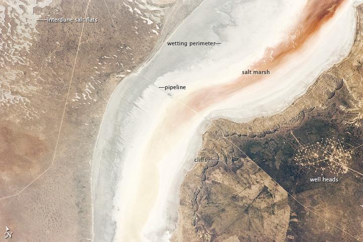 Sor Kaydak, Caspian Sea, Kazakhstan