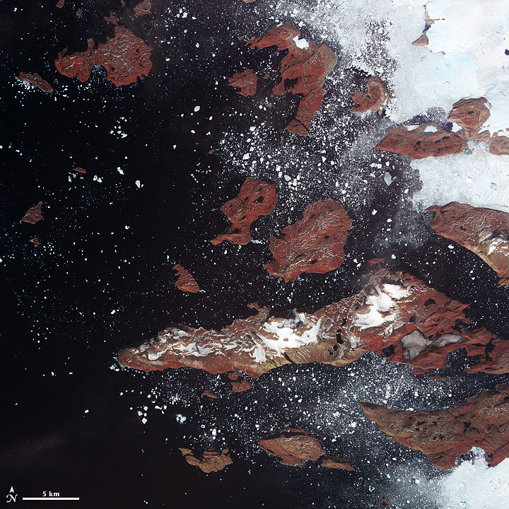 Icebergs off Western Greenland