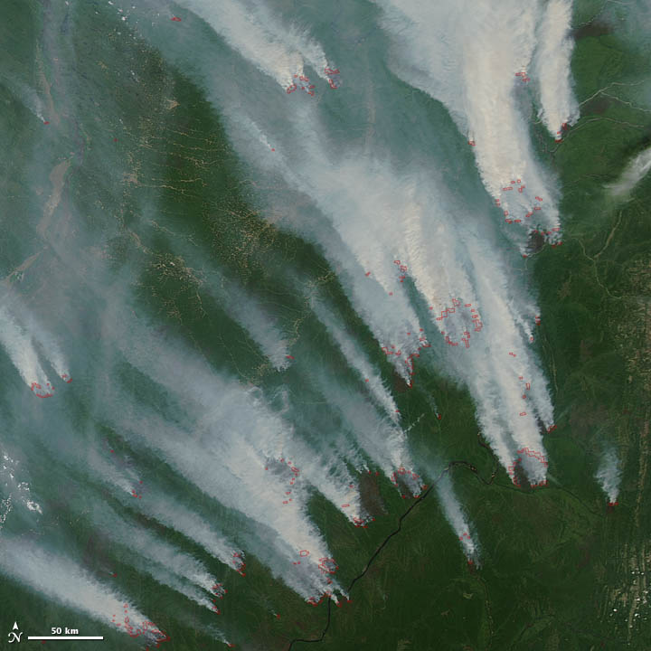 Wildfires in Siberia
