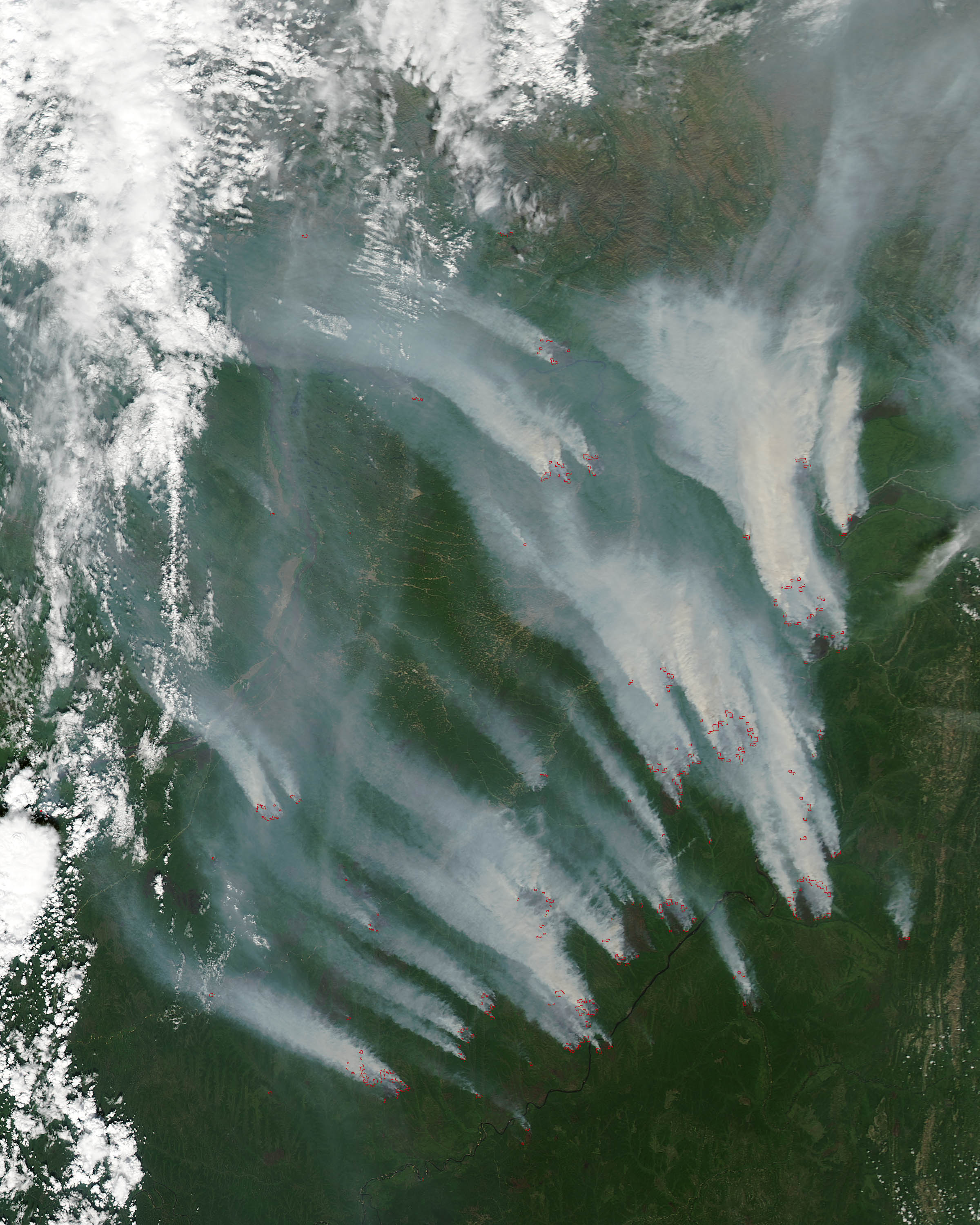 The area of ​​forest fire in Siberia increased 4 times per day 05/26/2017 87