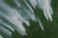 Wildfires in Siberia