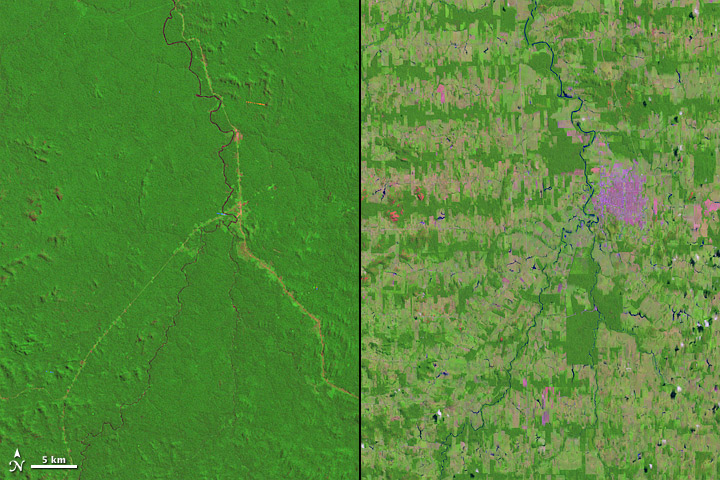 Greatest Hits from Landsat