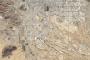 More City, Less Green in Tucson, Arizona