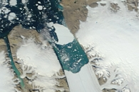Ice Island Drifts away from Petermann Glacier