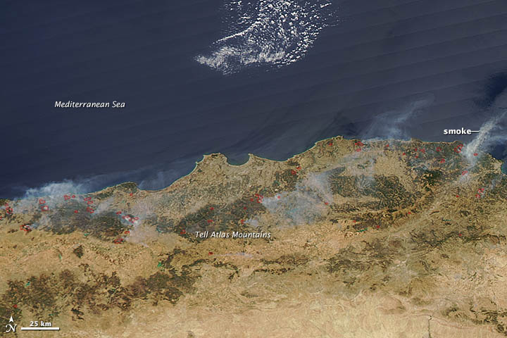 Wildfires in Algeria