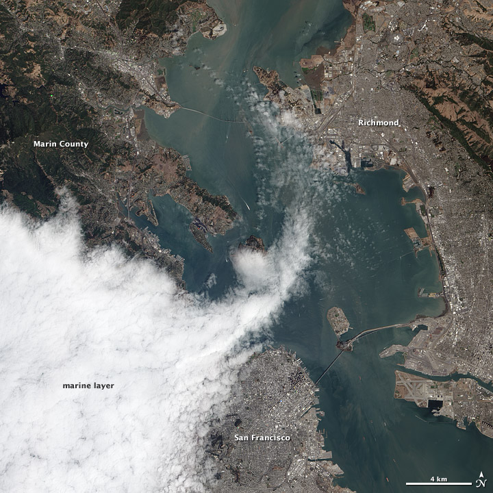 Another Foggy Day in San Francisco - related image preview