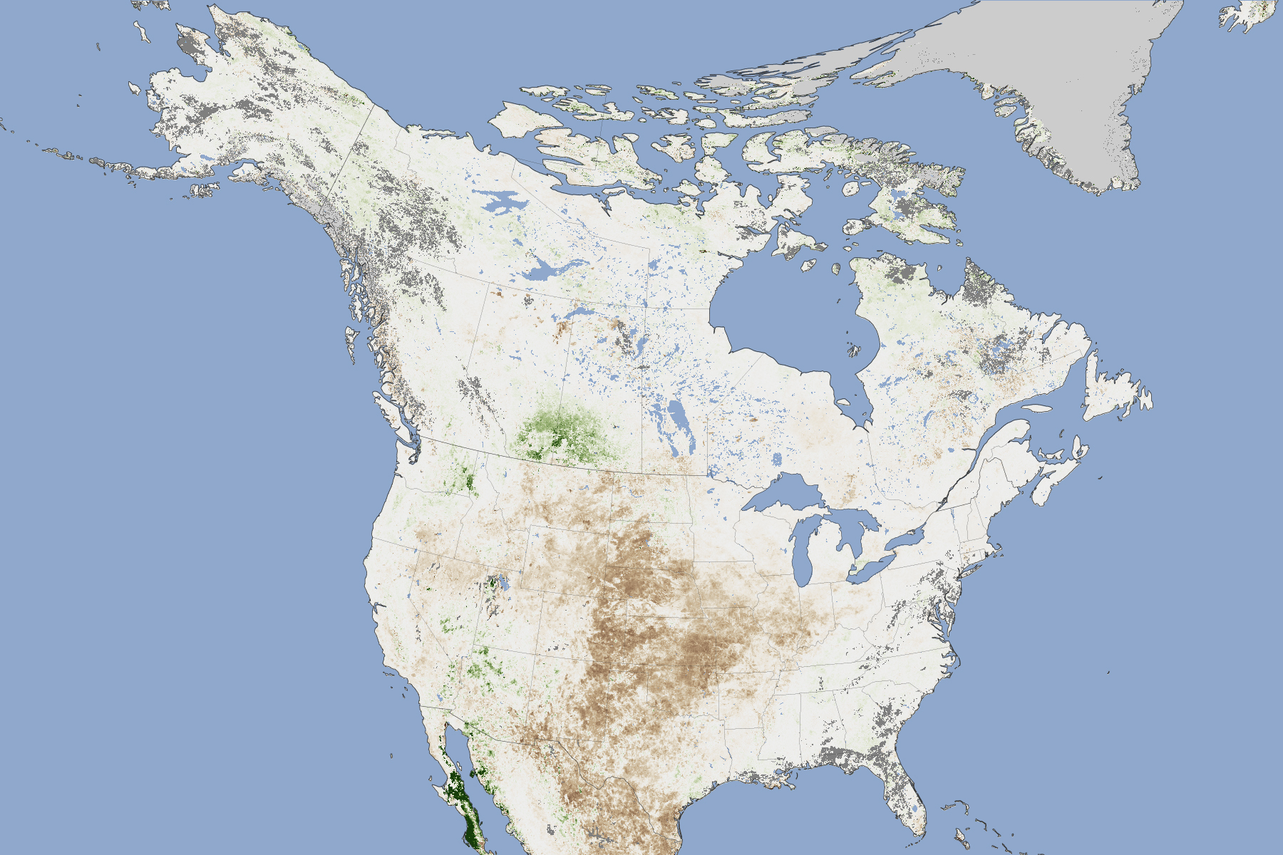Dried Out Vegetation Across America