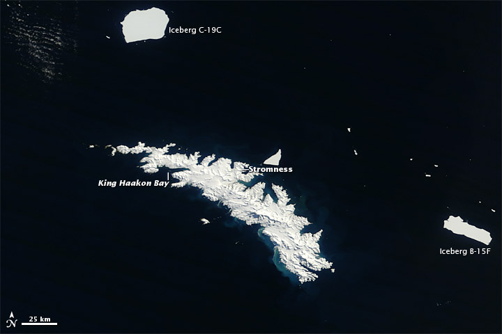 Icebergs around South Georgia Island