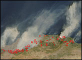 Forest Fires in Algeria