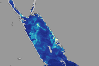 Chlorophyll and Currents in the Red Sea - related image preview