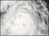Super Typhoon Wipha