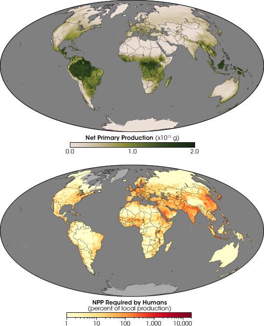 Human Demands on Earth's Plants