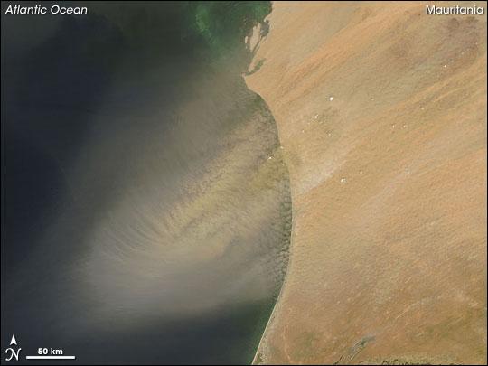 Dust Plume off Mauritania