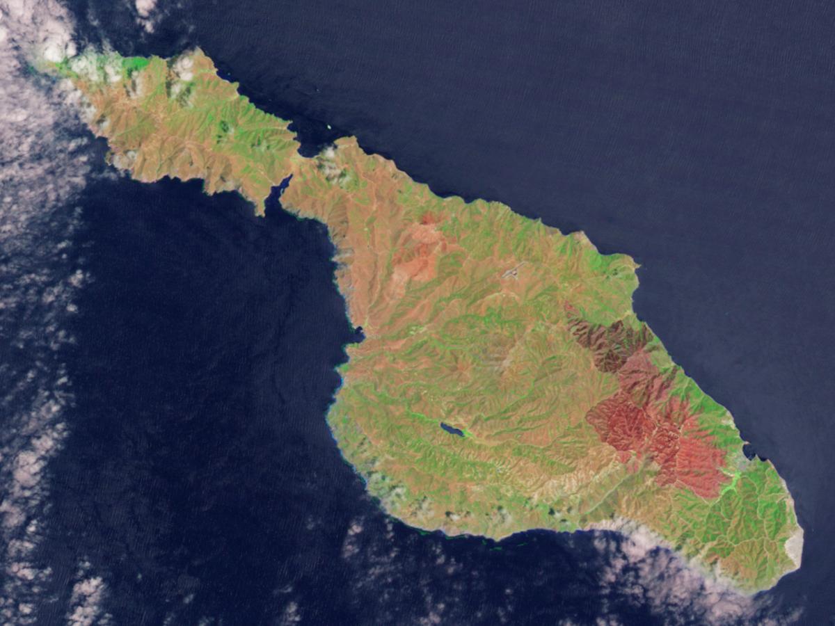 Burn scar on santa catalina island for The catalina
