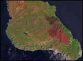 Burn Scar on Santa Catalina Island