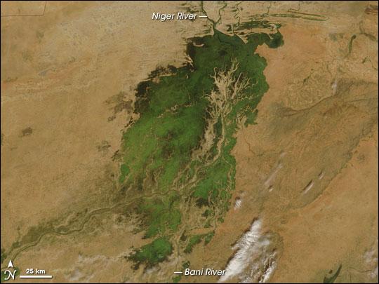 Inland Niger Delta, Mali