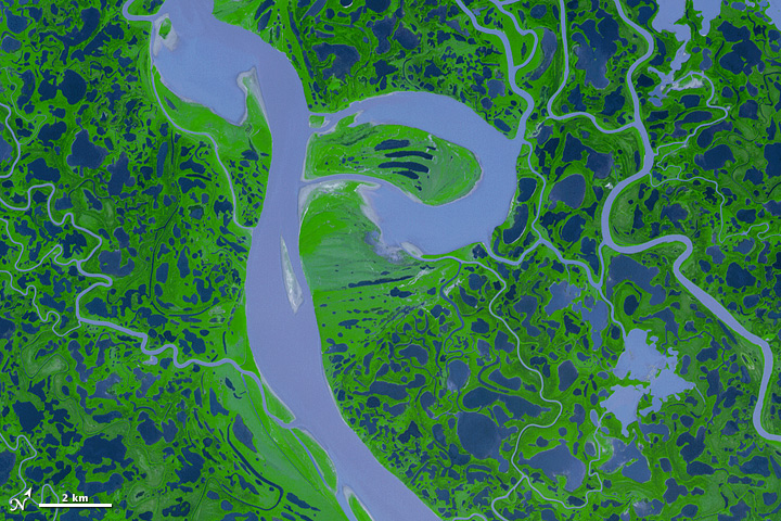 Mackenzie River Delta, Canada - related image preview