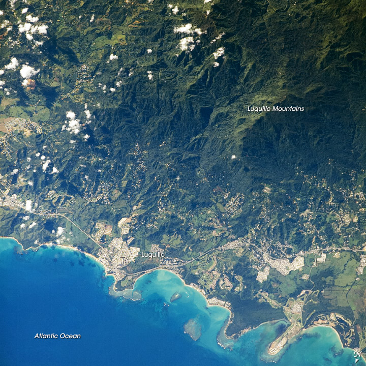 Luquillo Mountains, Puerto Rico - related image preview