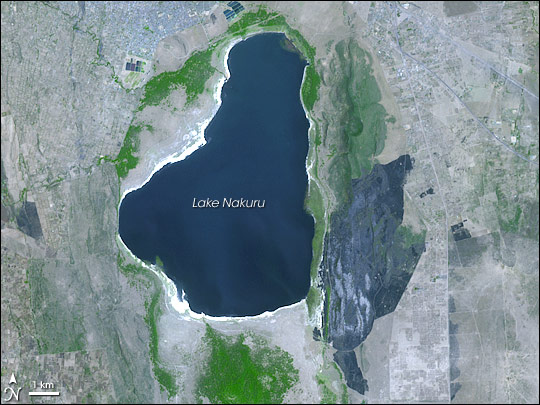 Fire Damages Kenya's Lake Nakuru National Park