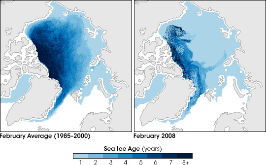 Arctic Sea Ice Younger than Normal