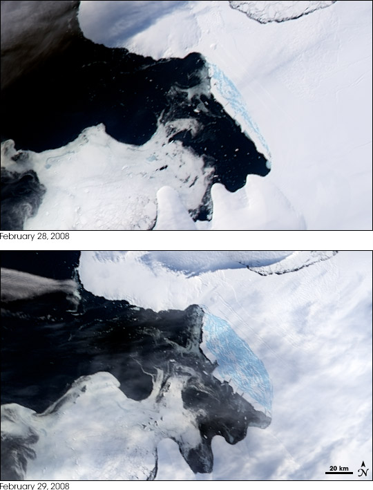 Wilkins Ice Shelf Disintegrates