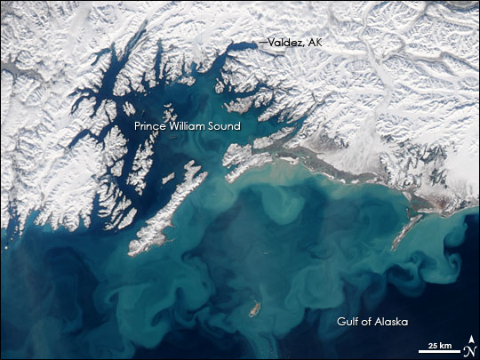 Swirling Sediment in Gulf of Alaska