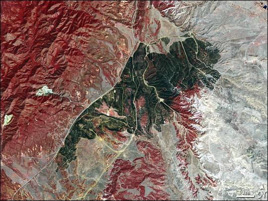 Burn Scar Near Fort Carson, Colorado