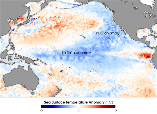 La Nina and Pacific Decadal Oscillation Cool the Pacific  - related image preview