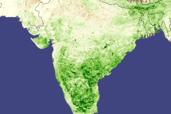 Monsoon Spurs Indian Green-up - related image preview