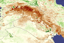 Drought in Iraq - selected image