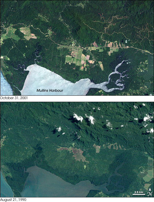 Forest Change, Mainland Papua New Guinea