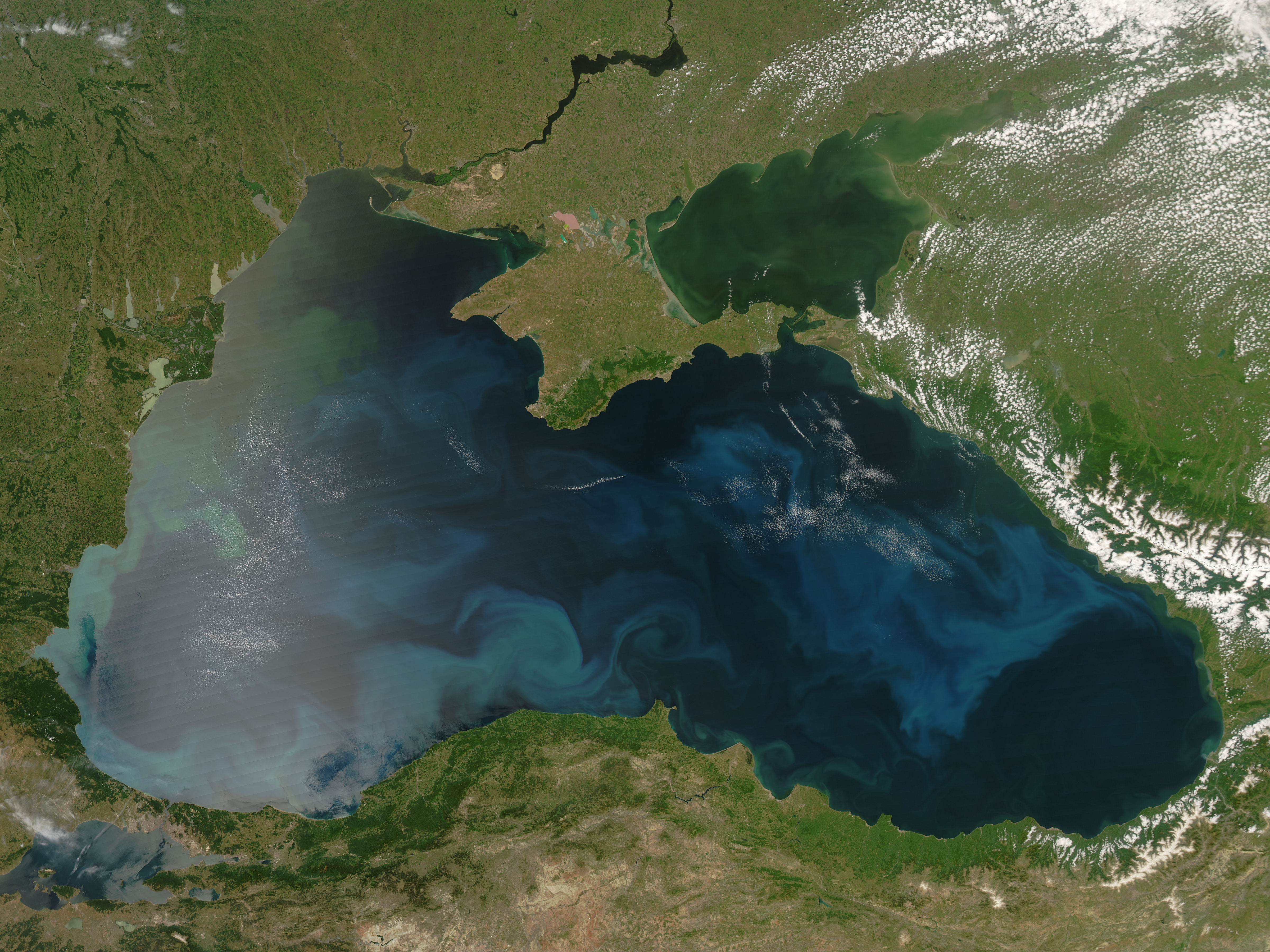 Black Sea Phytoplankton Bloom Image of the Day