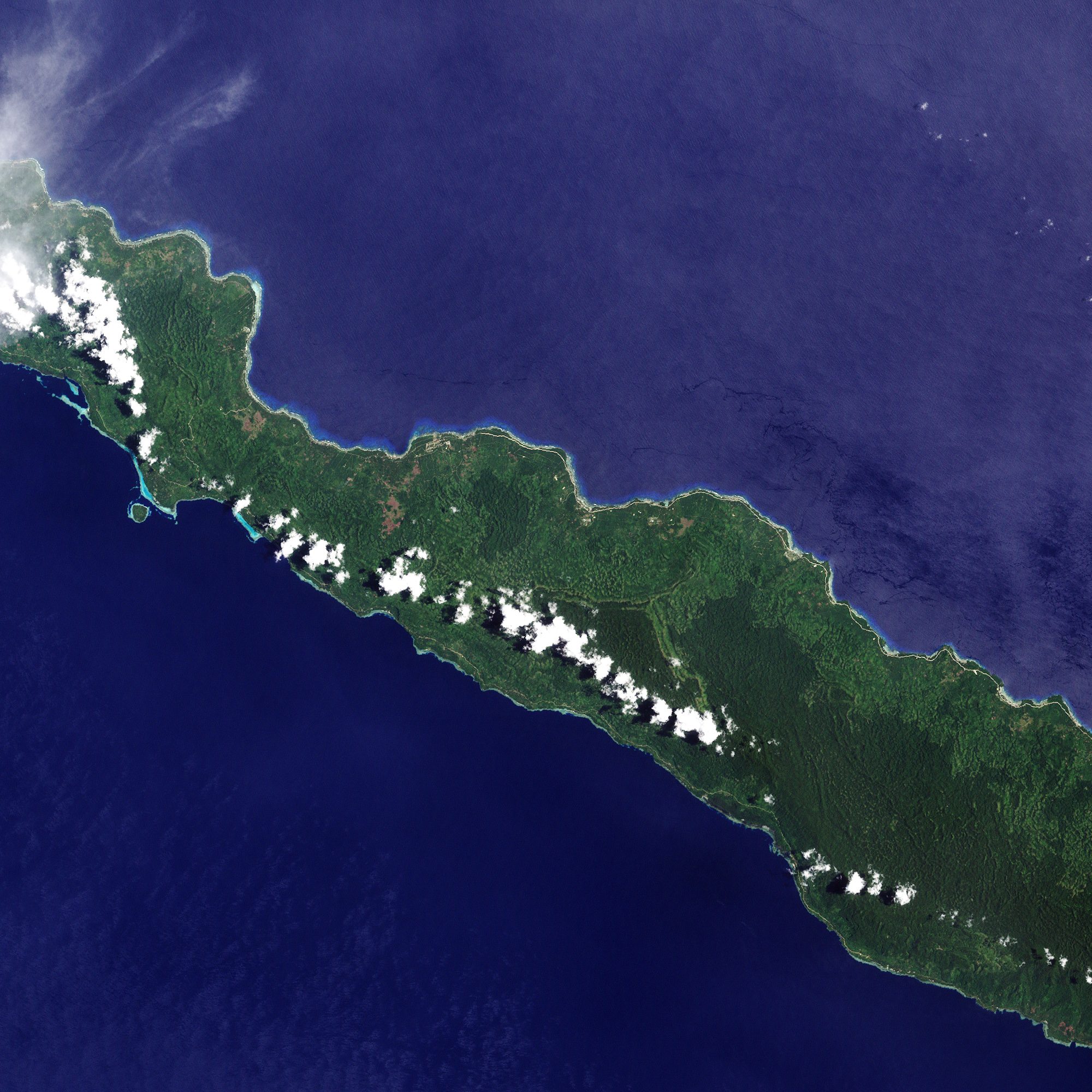Forest Change on New Ireland, Papua New Guinea - related image preview