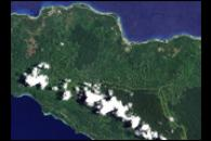 Forest Change on New Ireland, Papua New Guinea