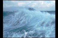Southern Ocean Carbon Sink
