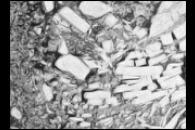 Wintertime Disintegration of Wilkins Ice Shelf