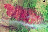 Burn Scar from the Yarrabin Fire in New South Wales