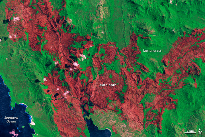 Giblin River Fire Burn Scar in Tasmania