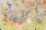 Bushveld Igneous Complex