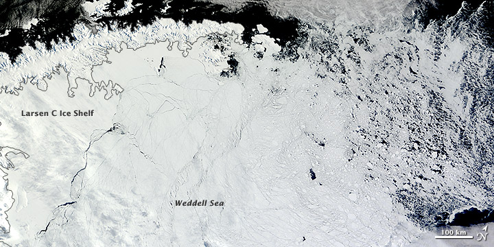 Antarctic Ice North of the Weddell Sea