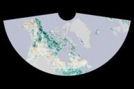 The Greening Arctic