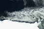 Icebergs and Sea Ice off the Mawson Coast