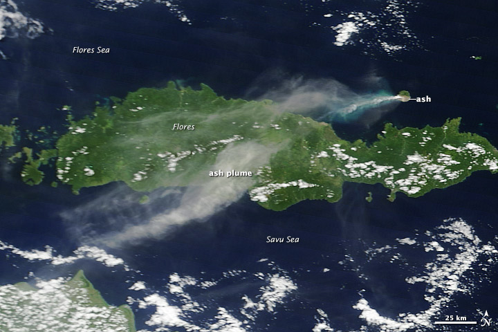 Strong Eruption at Paluweh Volcano