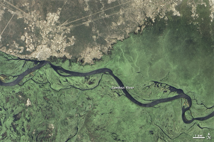 Wet Season Transforms the Zambezi River